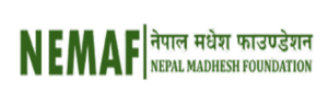NEMAF Logo